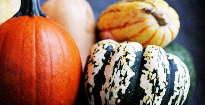 Ultimate Guide to the Most Popular Winter Squashes