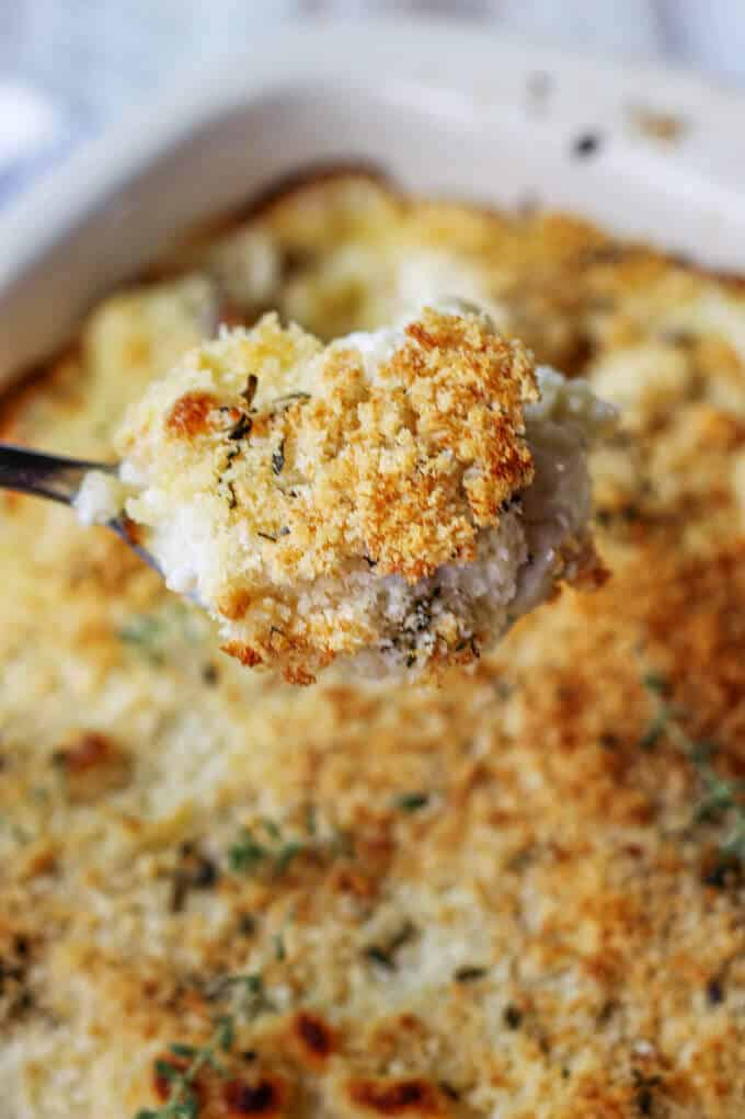 Spoonful of Cauliflower Pasta Bake with Brie and Fontina