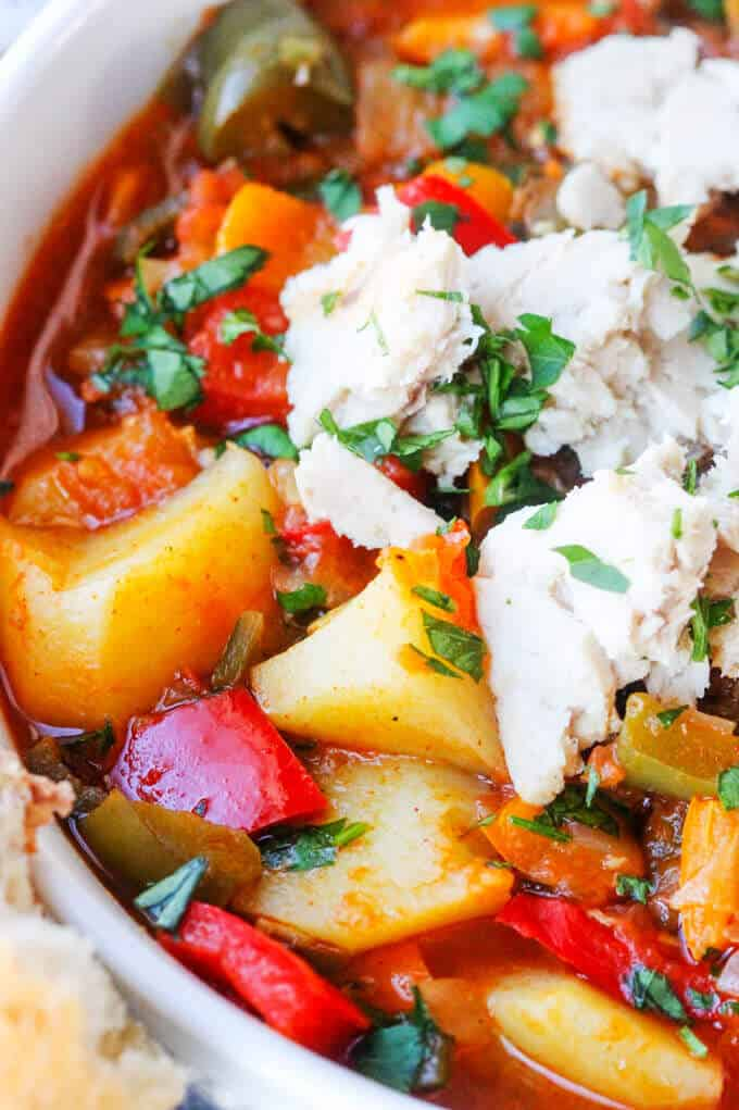 Spanish style tuna stew with potatoes and peppers, close up shot
